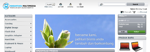 Pembangunan website Website Nusantara Multimedia